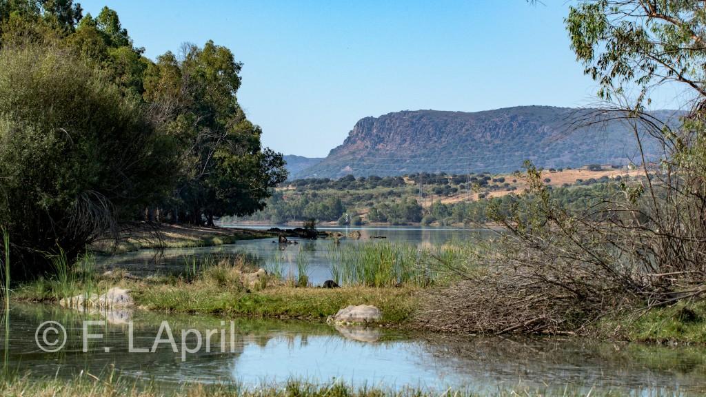 El rio Guadalupejo - The Guadalupejo river